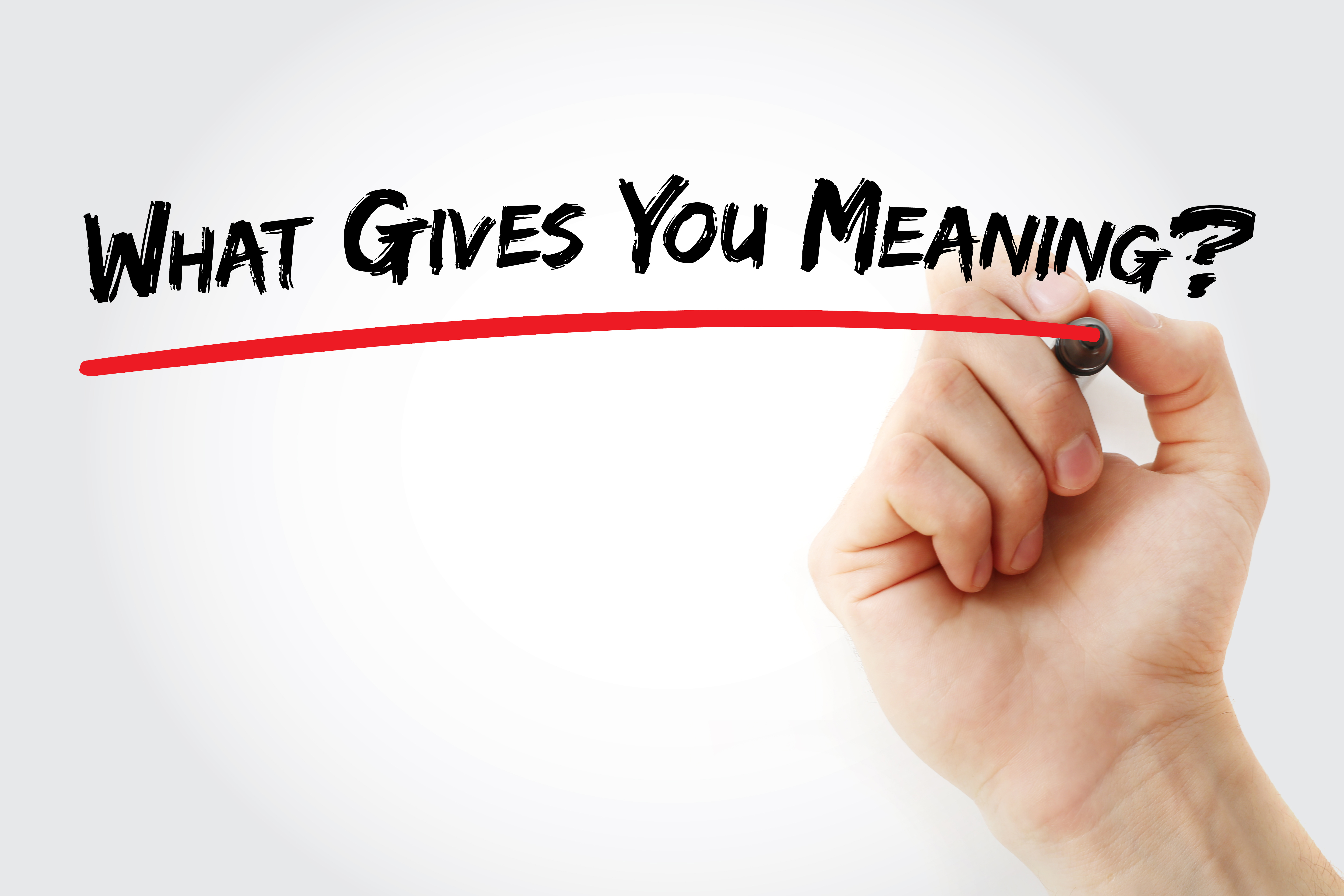 Image with the question What gives you meaning written - represents that Property Millionaire only do what gives them meaning